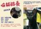 高雄|小黑虎斑貓咪認養