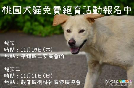 桃園平鎮/觀音-犬貓免費絕育活動!
