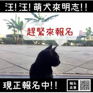 活動分享-汪!汪!萌犬來明志!!─北區交流會