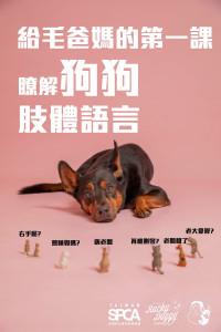 【給毛爸媽的第一課 了解狗狗肢體語言 公益講座 熱烈招生中】