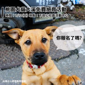 【#桃園大溪|犬貓免費絕育報名中】