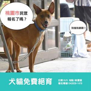 【#桃園市 犬貓免費絕育活動報名中】